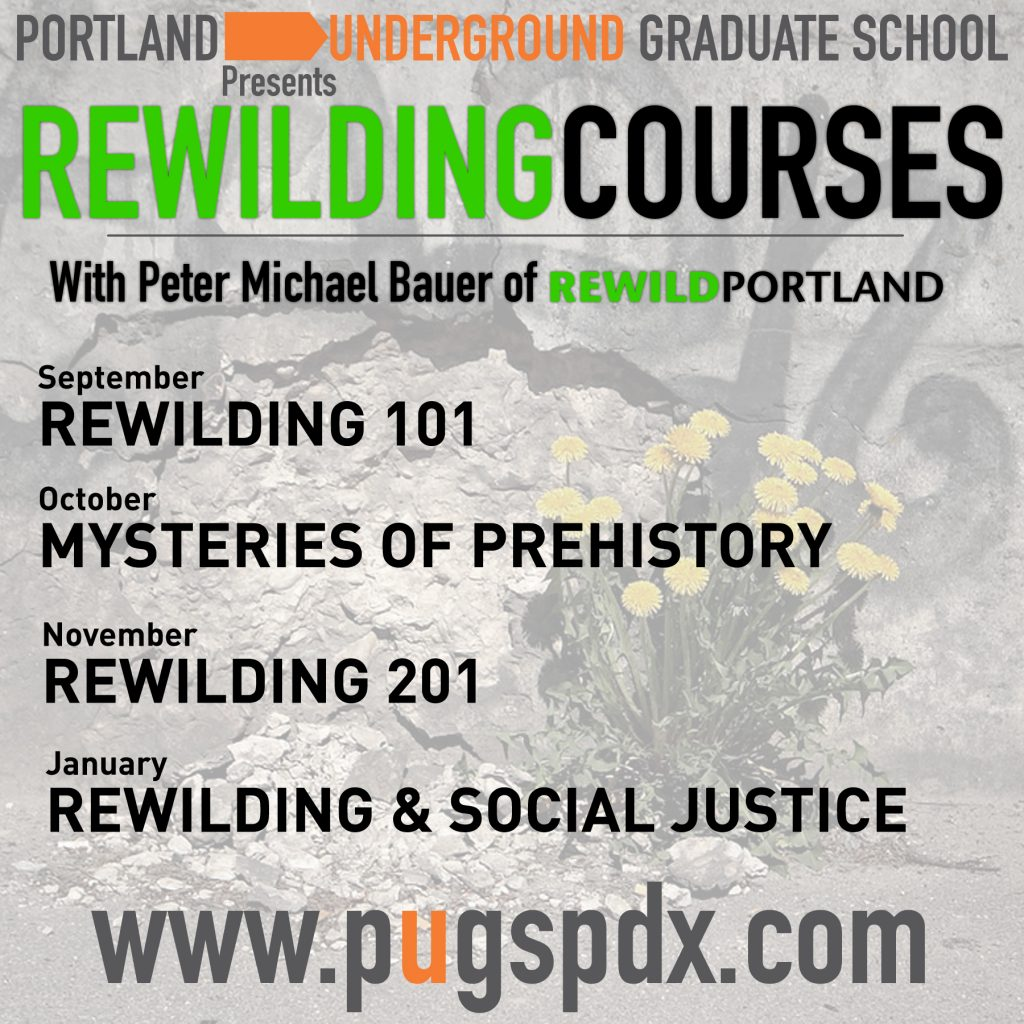 Rewilding Classes Online Flyer